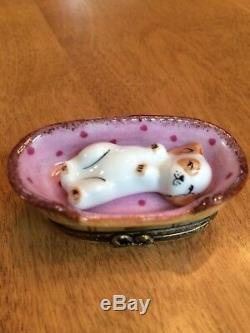 Authentic Puppy In A Basket Peint Main Limoges Box from France