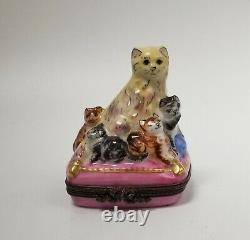 Limited Edition Mother Cat with Kittens On Pink Pillow Limoges Trinket Box RARE