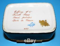 TIFFANY & Co PRIVATE STOCK ATELIER LE TALLEC FRANCE HAND PAINTED BLACK BOX